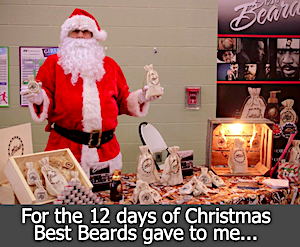 For the 12 days of Christmas best beards gave to me.